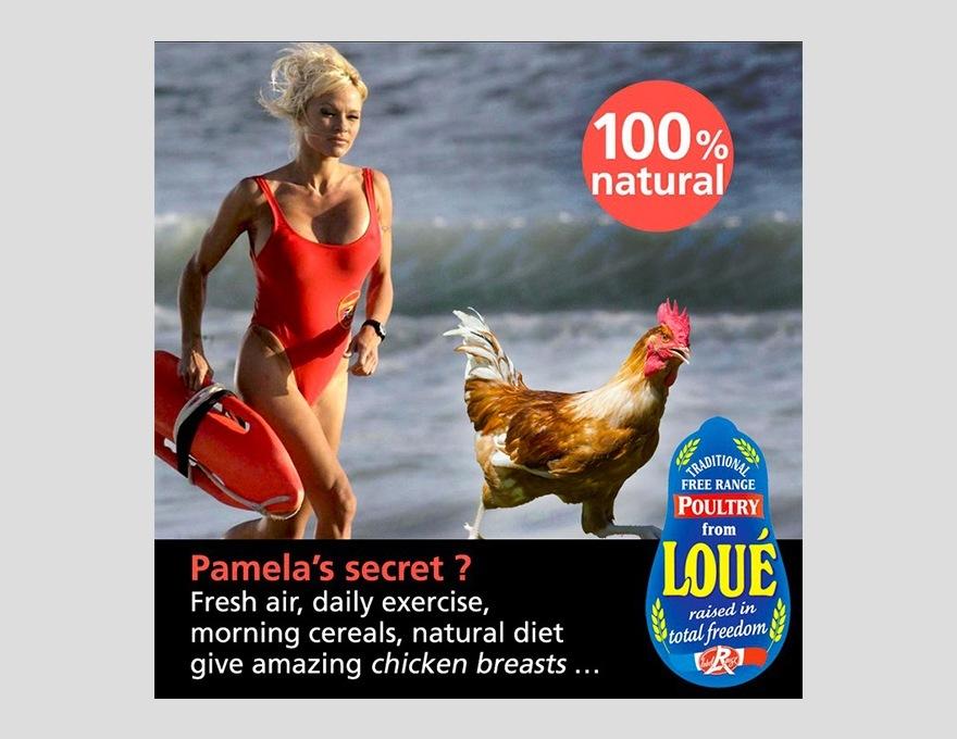 Pamela-Anderson-Loué-pub